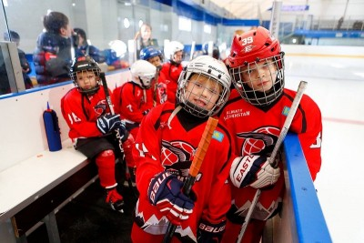 Хоккей. Плюсы и минусы